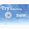 Library Graphic: Try something new