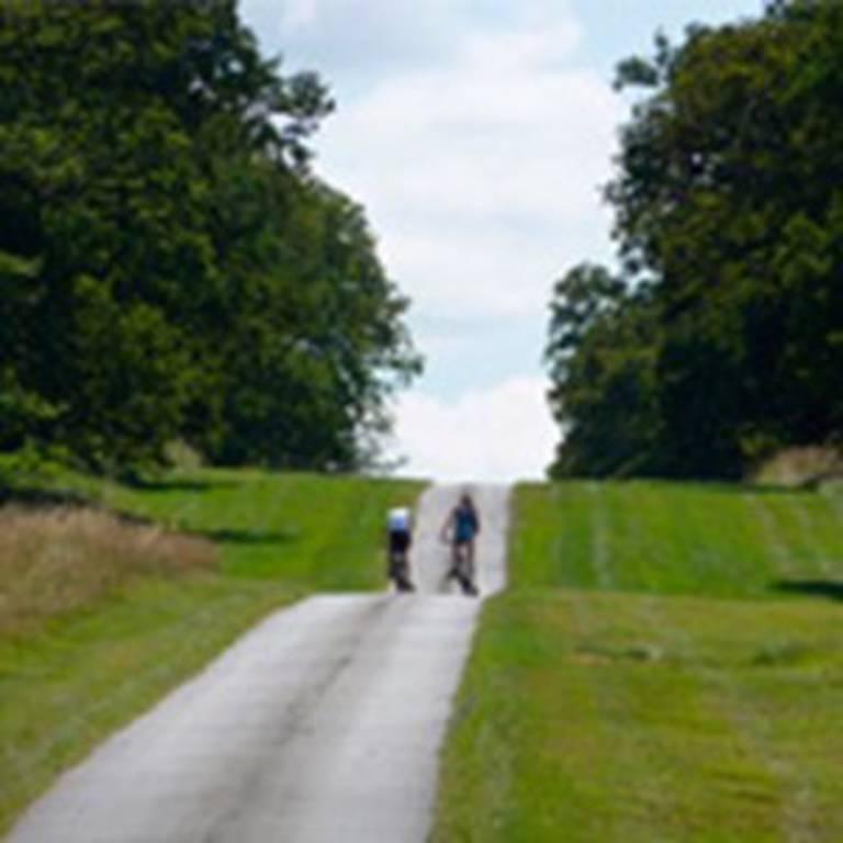 Cycling and Walking